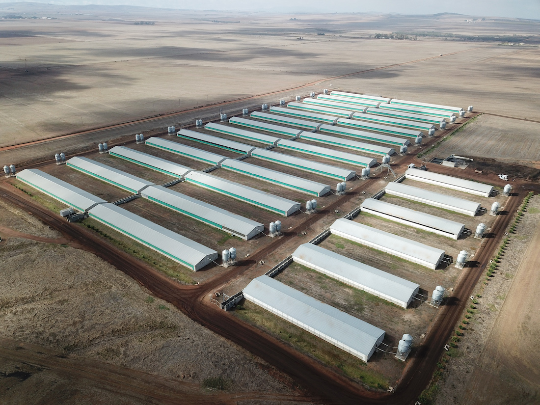 Agricultural Steel Structures
