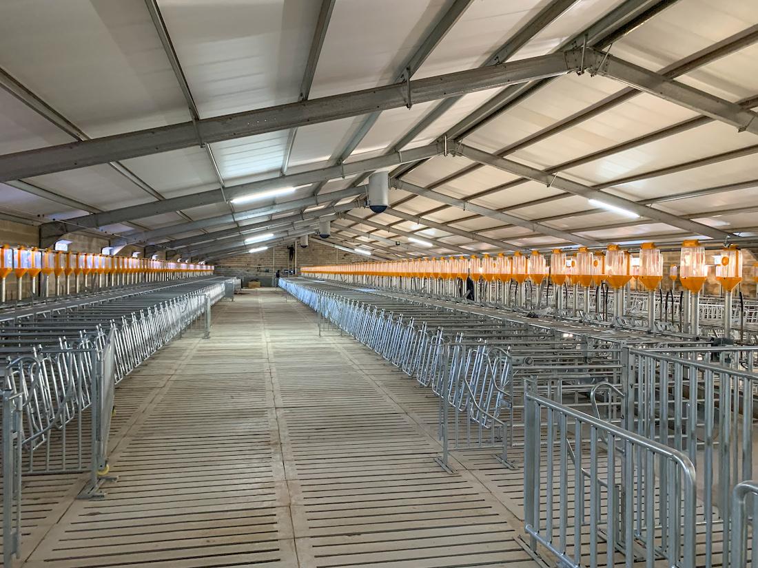 Agricultural Steel Structures Alexanderhoek Boerdery Pig Housing